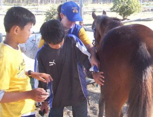 horse-riding-instructor1