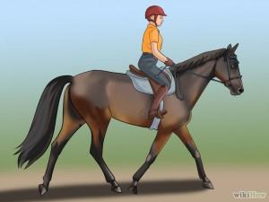 Good-Horse-Rider