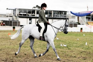 Good Horse Person