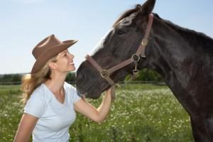Horses-Happiness
