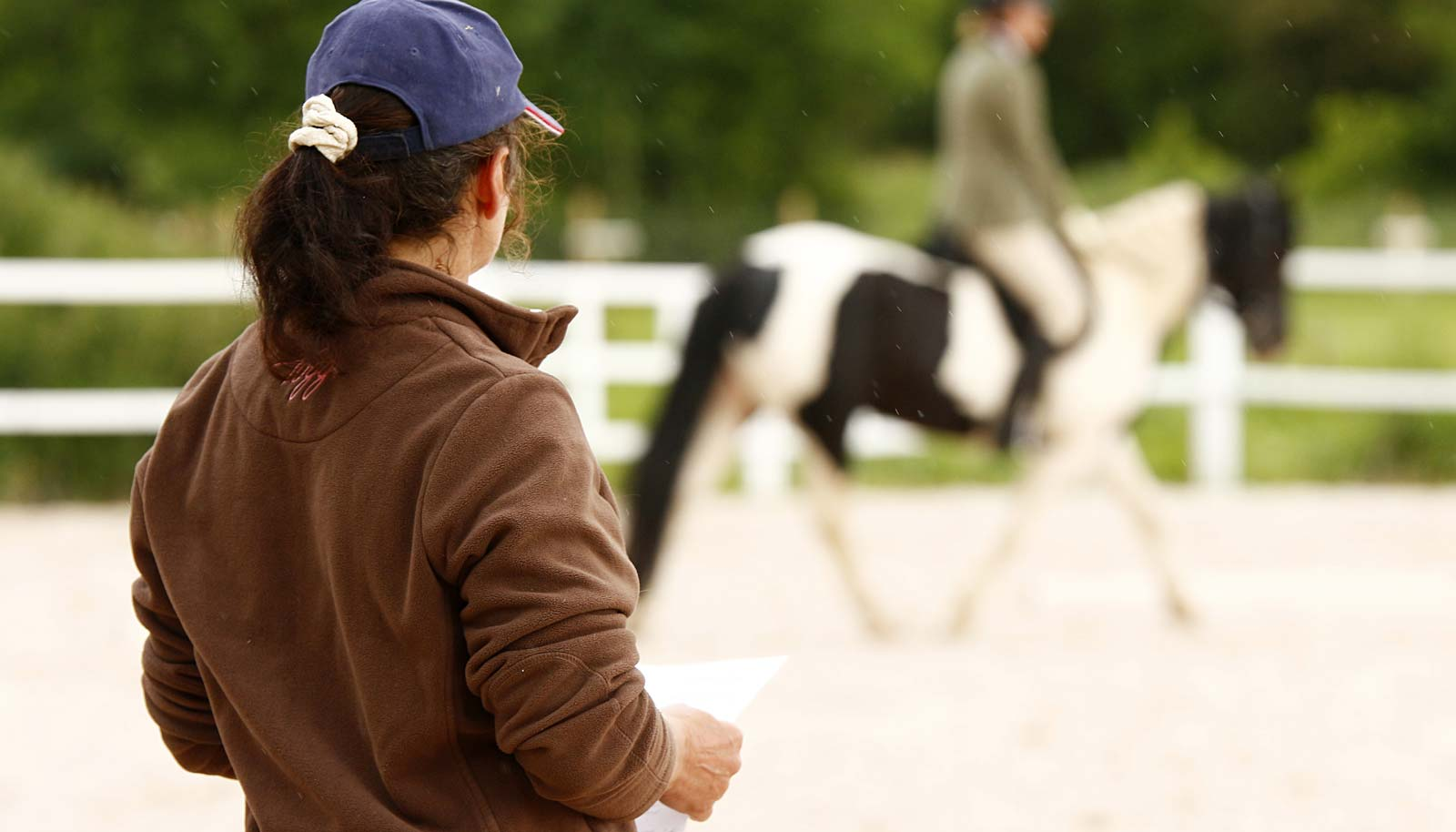 Horse Riding Instructor Online Horse College